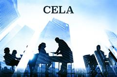 cela-theme-block-article
