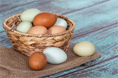 eggs-basket-cropped